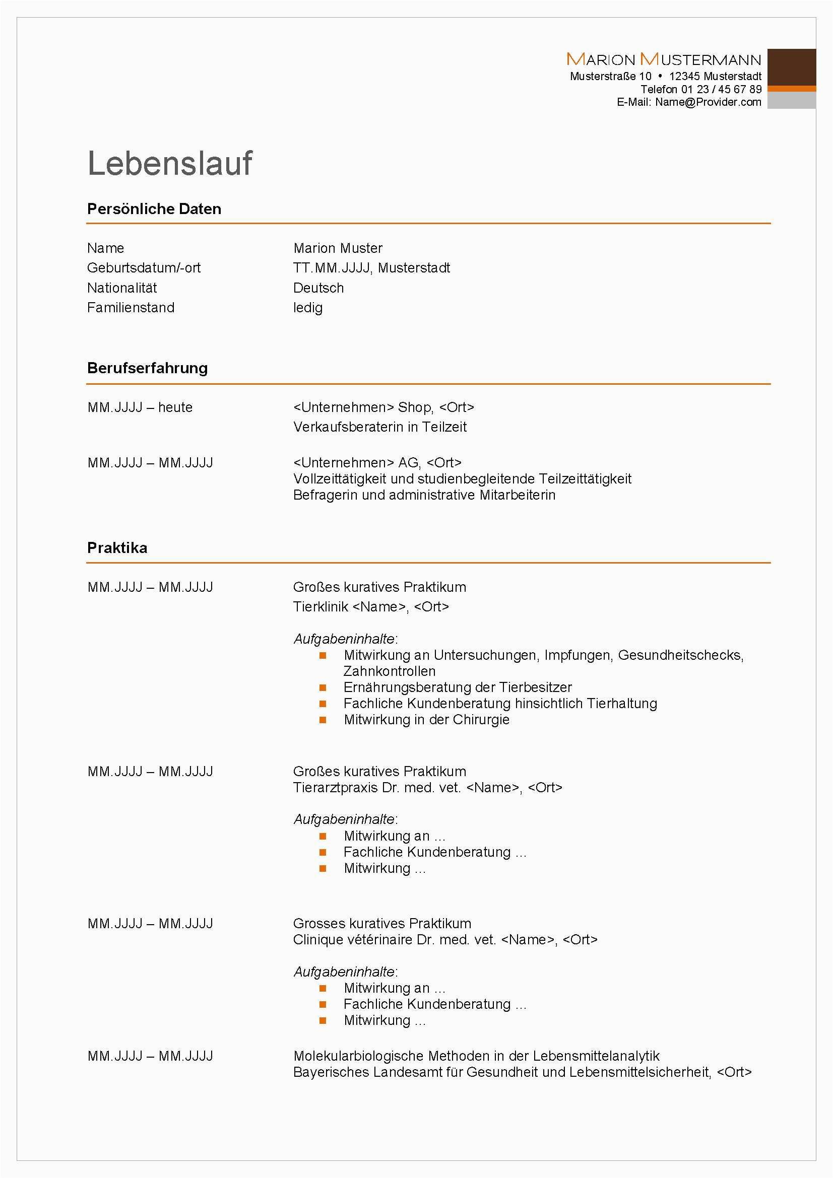 Lebenslauf Maler Und Lackierer Vorlagen Bewerbungsservice Aktiv Professionelle Muster Vorlagen Für