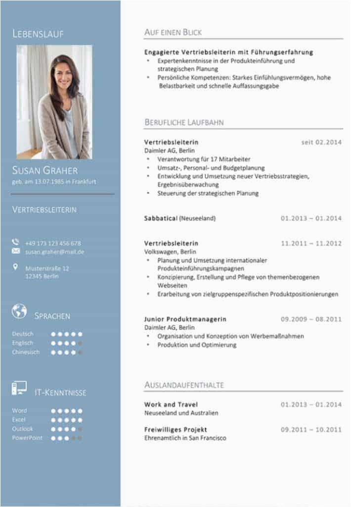 Lebenslauf Design mit Icons 710x1024