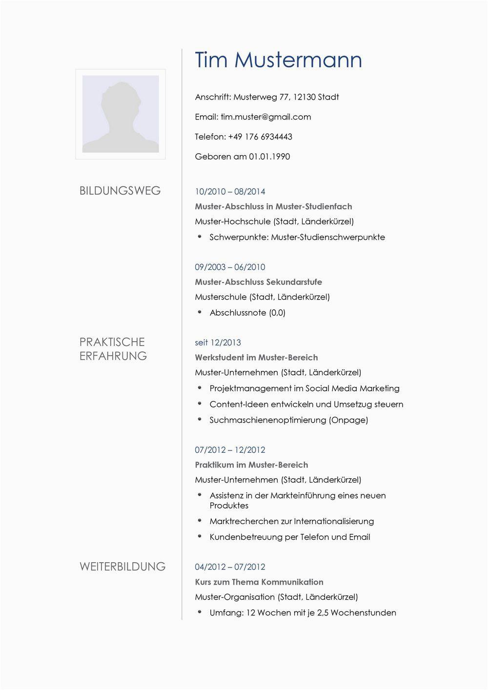 Lebenslauf Vorlagen Controller Lebenslauf Muster Für Multimediakünstler