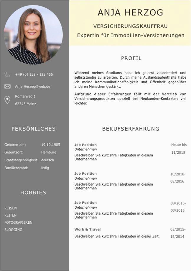 Lebenslauf Architekt Berufserfahrung Bewerbungsvorlage Premium Xl Für Viel Berufserfahrung