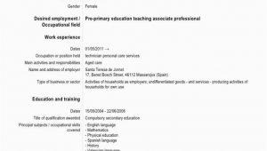 Cv Englisch Language Skills Cv Language Skill Level How to Write Resume foreign