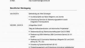 Deutsch Im Lebenslauf Angeben Tabellarischer Lebenslauf Tipps Und Praktische Beispiele
