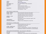 Deutsch Muttersprache Lebenslauf Englisch Frisch Lebenslauf Informatiker Muster Briefprobe