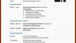 Deutsch Muttersprache Lebenslauf Englisch Lebenslauf Englisch Interessen