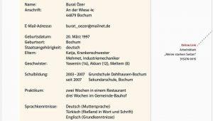 Deutschkenntnisse Lebenslauf Ihr Downloadpaket Berufsorientierung Pdf Kostenfreier Download