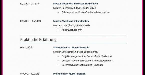 Ehrenamtliche Tätigkeiten Lebenslauf Englisch Lebenslauf Ehrenamt Ehrenamtliches Engagement Muster Wohin