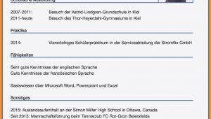 Englisch C1 Lebenslauf Sprachniveau Lebenslauf Deutsch C1 A1 Englisch Auf Cv