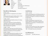 Hobbies Cv Englisch Vorlage Lebenslauf Jurist In 2020 Mit Bildern