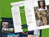 Kreativer Lebenslauf Querformat Layout Vorlagen Mitarbeiterzeitung Betriebszeitung
