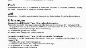 Lebenslauf Architektur Nürnberg Cv Deutsch by Julia Sabrina issuu