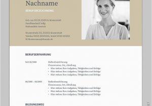 Lebenslauf Bewerbung Deutsch Bewerbung Napea Mit Lebenslauf Deutsch