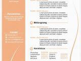 Lebenslauf Buchhalter Vorlagen Bewerbung Muster Buchhalter In Lebenslauf Vorlagen