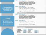Lebenslauf Business Analyst Deutsch Bewerbung Muster Business Analyst Lebenslauf Vorlagen