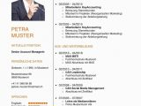 Lebenslauf Business Analyst Deutsch Lebenslauf Vorlage Klassisch & Modern In 2020 Mit Bildern
