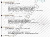 Lebenslauf Controller Englisch Lebenslauf Vorlagen & Muster ■Pdf & Word Kostenlos En