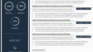 Lebenslauf Design Beispiele Premium Bewerbungsmuster 3