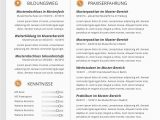 Lebenslauf Design Karrierebibel Premium Bewerbungsmuster 4