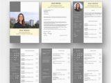 Lebenslauf Design Selbst Erstellen Bewerbungsvorlage Premium Xl Für Viel Berufserfahrung