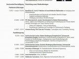 Lebenslauf Deutsch Chronologie Lebenslauf Muster Als Vorlage