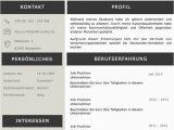 Lebenslauf Deutsch Design Lebenslaufvorlage Cv Platinum Candidate In Deutsch Download