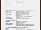 Lebenslauf Deutsch Klasse 9 30 Absolut Kostenlose Vorlagen Fr Den Lebenslauf