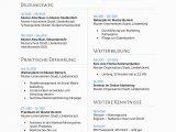 Lebenslauf Deutsch Online Bewerbungsmuster Für Bwl