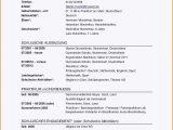 Lebenslauf Deutsch Reihenfolge 10 Lebenslauf Usa