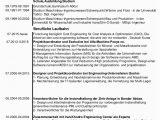 Lebenslauf Deutsch Und Türkisch Muttersprache St Lebenslauf01