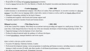 Lebenslauf Englisch Profile so Schreiben Sie Einen Englischen Lebenslauf
