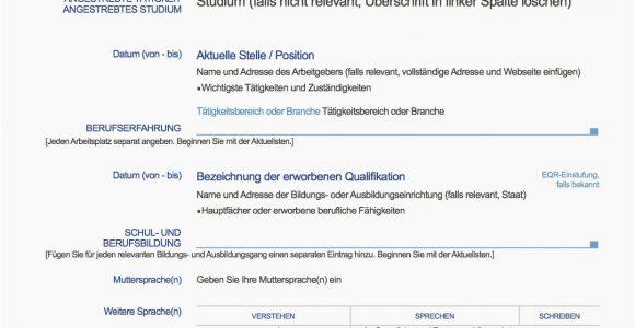 Lebenslauf Europass Deutsch Muster Europäischer Lebenslauf Vorlage Deutsch