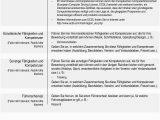 Lebenslauf Grafikdesign Löschen Leitfaden Für Verwendung Des Europass Lebenslaufs