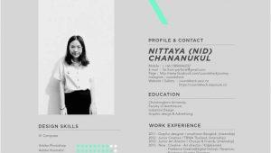 Lebenslauf Grafikdesign Online Coundsheck Chananukul Mit Bildern