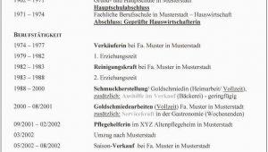 Lebenslauf Hauswirtschafterin Vorlagen 3 Klassischer Lebenslauf Maxi Muster Times New Roman Id
