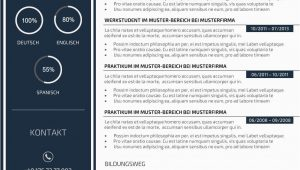 Lebenslauf Layout Design Premium Bewerbungsmuster 3