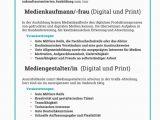 Lebenslauf Mediengestalter Digital Und Print 2