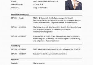 Lebenslauf Modell Auf Deutsch Lebenslauf Vorlagen & Muster ...