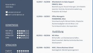 Lebenslauf-muster-design-02 Bewerbung Lebenslauf Design Vorlage