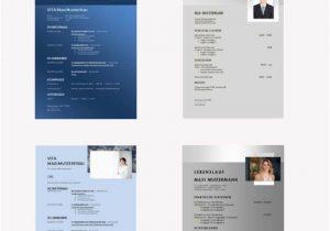 Lebenslauf Muster Design Kostenlos Lebenslauf Vorlagen Modern Und Kostenlos Zum Download Hier