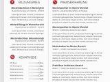 Lebenslauf Muster Design Premium Bewerbungsmuster 4