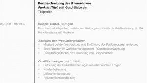 Lebenslauf Muster Qualitätsmanager Muster Lebenslauf Weber Consulting Gmbh Pdf Kostenfreier