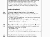 Lebenslauf Objective Deutsch Der Lebenslauf Curriculum Vitae Resume Focus Line