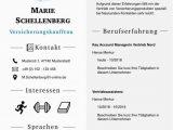"""Lebenslauf Profil Deutsch Moderne Lebenslaufsvorlage """"attention Express"""" Als"""