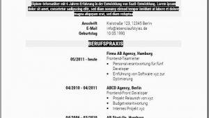 Lebenslauf Schlicht Xyz Lebenslaufvorlage Gratis Download