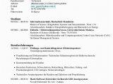 Lebenslauf Sprachkenntnisse Deutsch Türkisch Lebenslauf Gezer Aziz