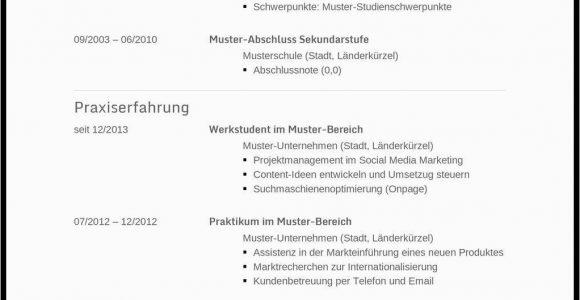 Lebenslauf Tipps Xing Muster Vorlage Lebenslauf Schweiz Kostenlos Download Schüler