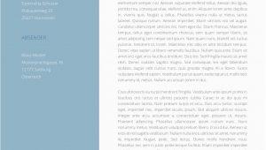 Lebenslauf Und Anschreiben Design Premium Bewerbungsmuster 1