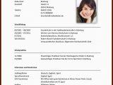 Lebenslauf Und Anschreiben Gleiches Design Deckblatt Lebenslauf Initiativbewerbung Als Projektleiter