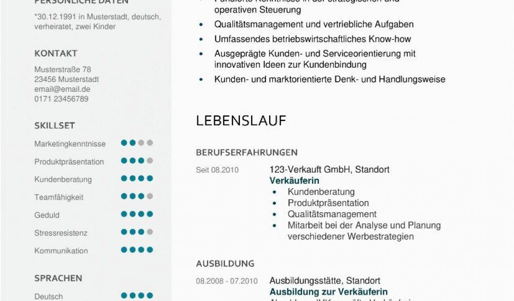Lebenslauf Und Anschreiben Vorlagen Lebenslauf Muster 48 ...
