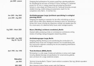 Lebenslauf Und Bewerbung Auf Englisch Der Lebenslauf Curriculum Vitae Resume Focus Line