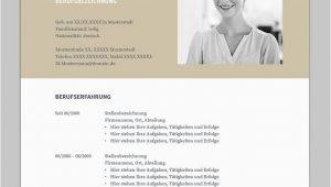 Lebenslauf Vorlage Consulting Bewerbung Napea Mit Lebenslauf Deutsch